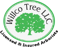 Willco Tree LLC